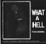 what a hell fukushima