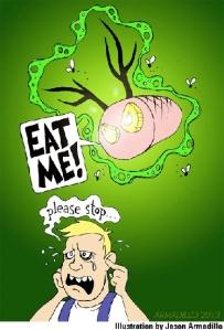 Pork Knuckles Illustration