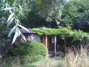 diel house